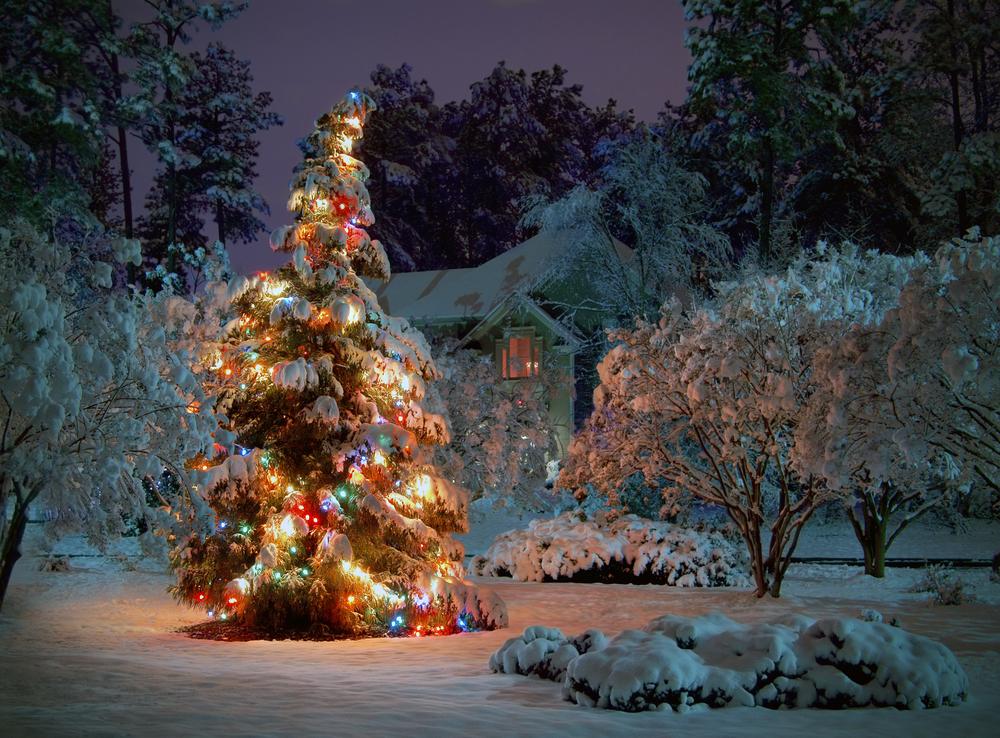 Juletretenning 2013